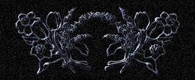 Estrella desdichada -  soneto alejandrinos Adorno3
